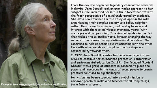 2020 Inspiration - Jane Goodall